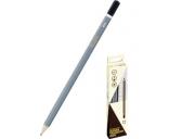 Harilik pliiats HB kummita 12tk pakis teritatud